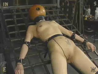 Insex - The Last Day of Xmas (Live Feed From December 25, 2002) - 731
