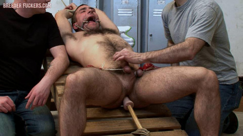 Tied with hairy body on display, balls weighed down