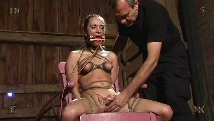 Insex - 62 At the Farm (62, 912)