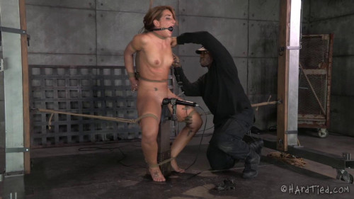 SquirtFest (24 Sep 2014) Hardtied