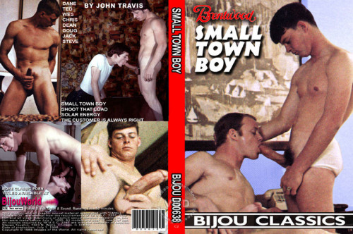 Small Town Boy (1982)
